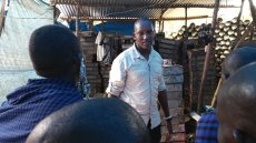 Tanzanian Alumnus Spearheads Agricultural Initiatives for Maasai Community